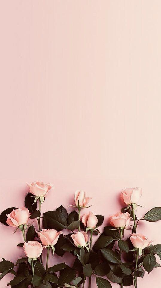 35 Stunning Iphone Wallpaper Backgrounds For 2019 Mobile Phone Wallpaper Cute Wallpaper Quoto Wallpaper Imtopic